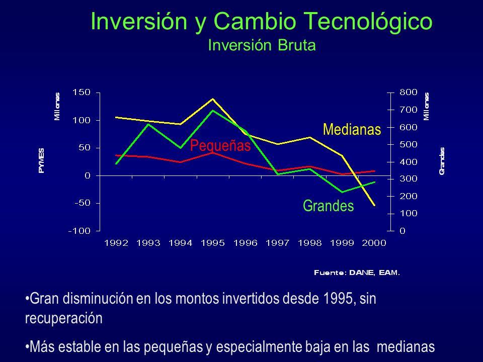 Inversión y Cambio Tecnológico Inversión Bruta