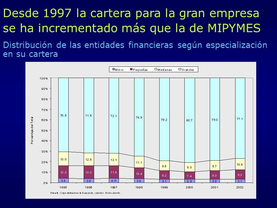 Desde 1997 la cartera para la gran empresa se ha incrementado más que la de MIPYMES