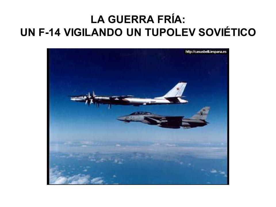 LA GUERRA FRÍA: UN F-14 VIGILANDO UN TUPOLEV SOVIÉTICO