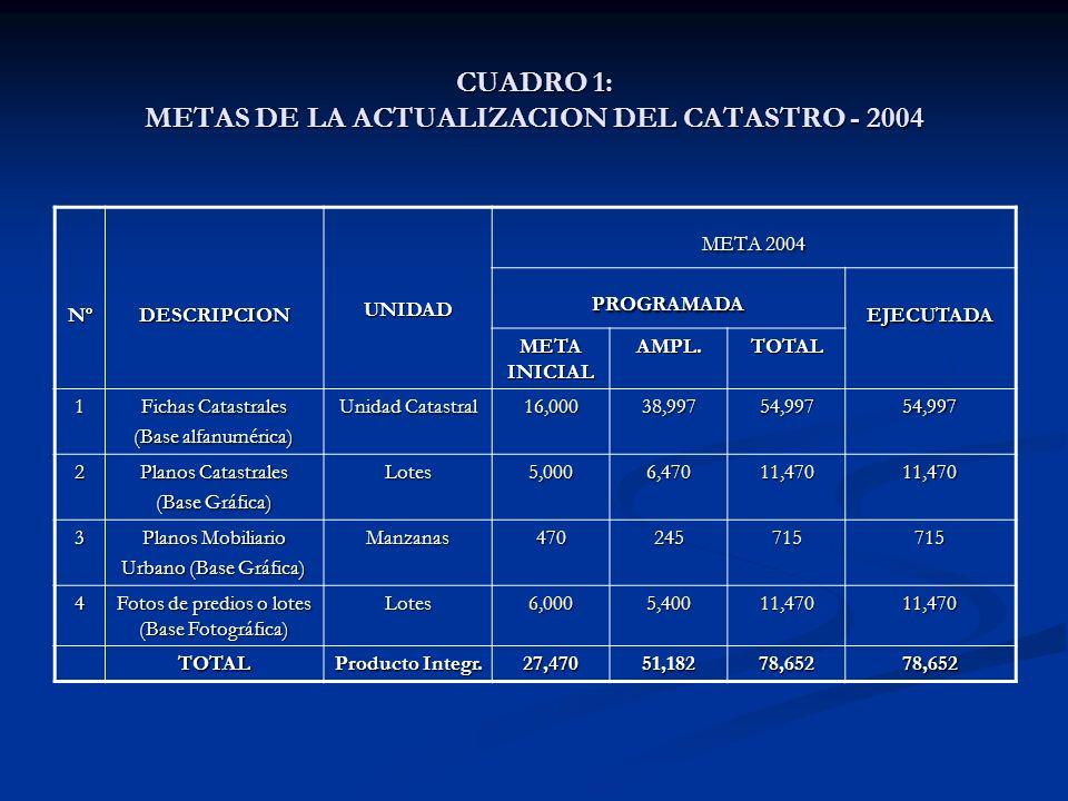 CUADRO 1: METAS DE LA ACTUALIZACION DEL CATASTRO - 2004