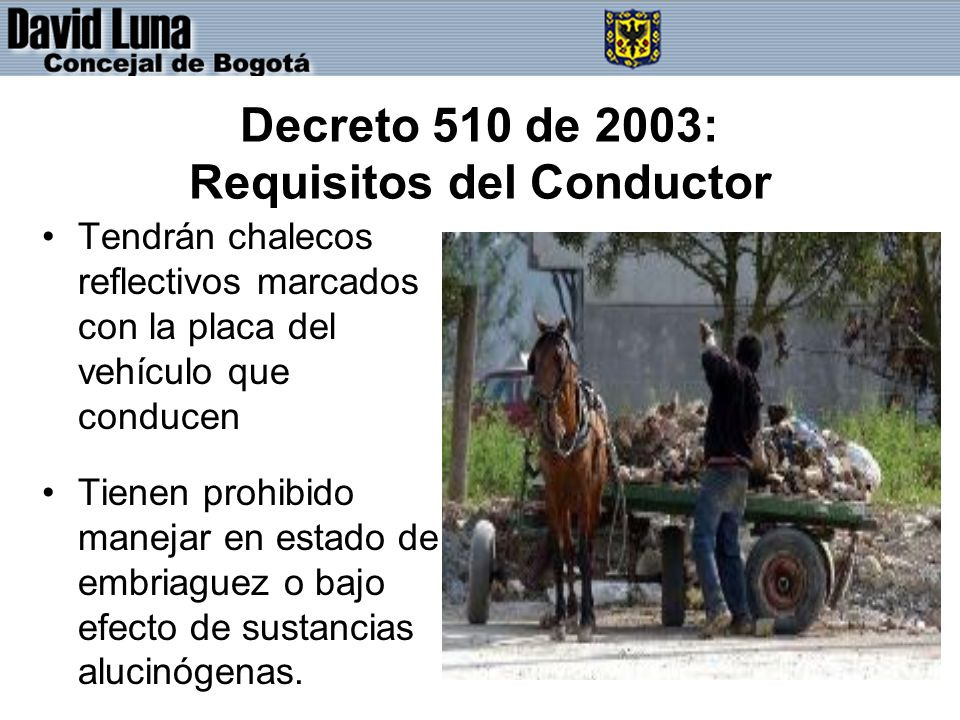 Decreto 510 de 2003: Requisitos del Conductor