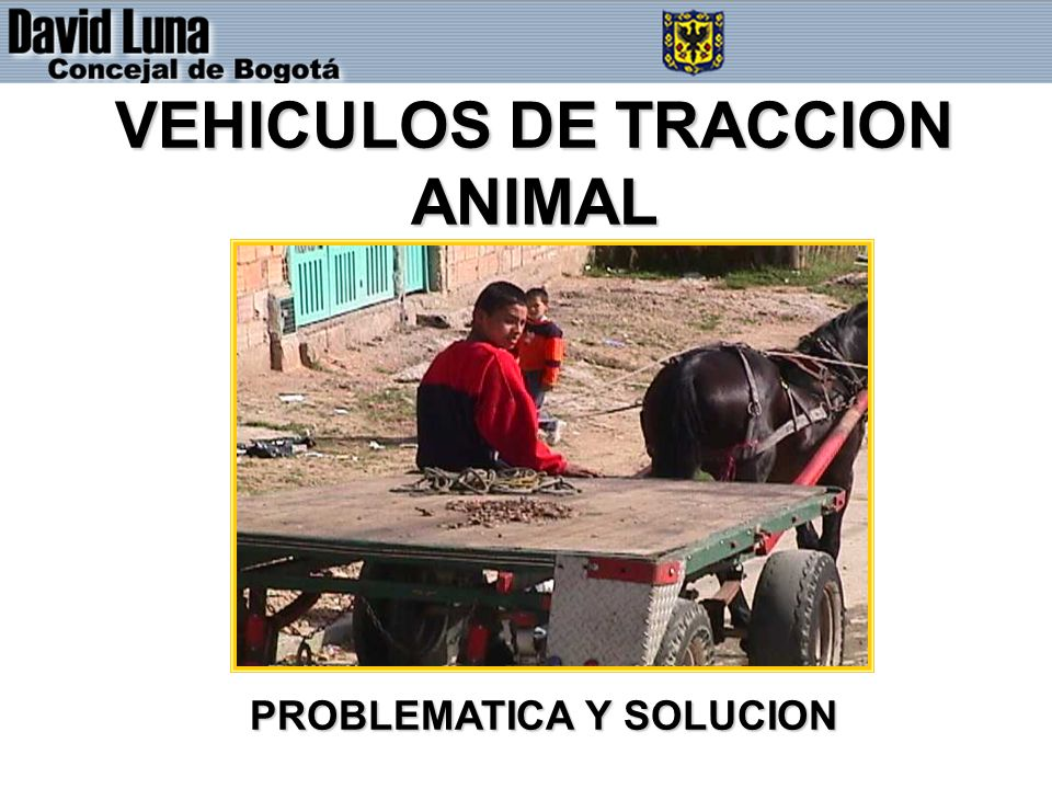 VEHICULOS DE TRACCION ANIMAL