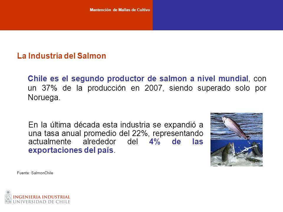 La Industria del Salmon