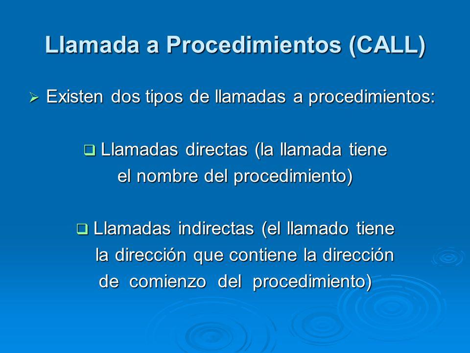 Llamada a Procedimientos (CALL)