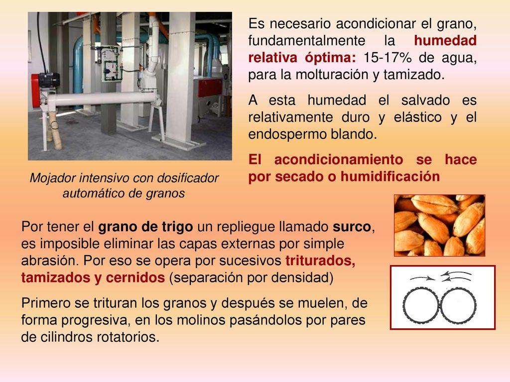 Dosificador Para Granos: La Industria De Los Cereales
