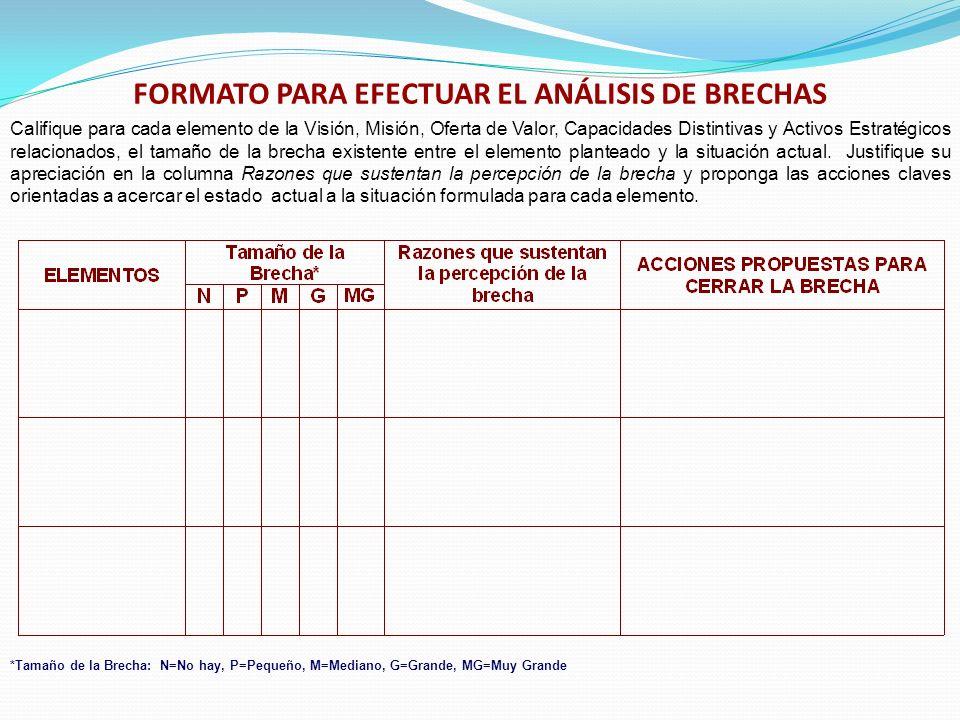 FORMATO PARA EFECTUAR EL ANÁLISIS DE BRECHAS
