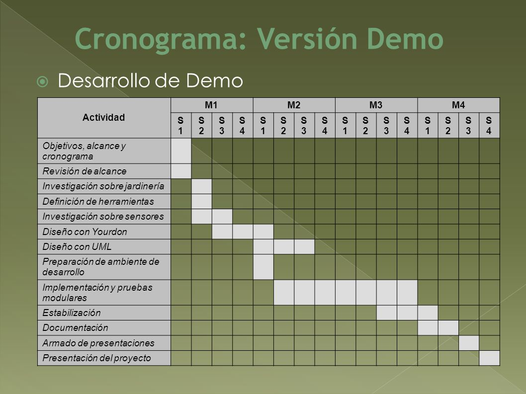 Cronograma: Versión Demo