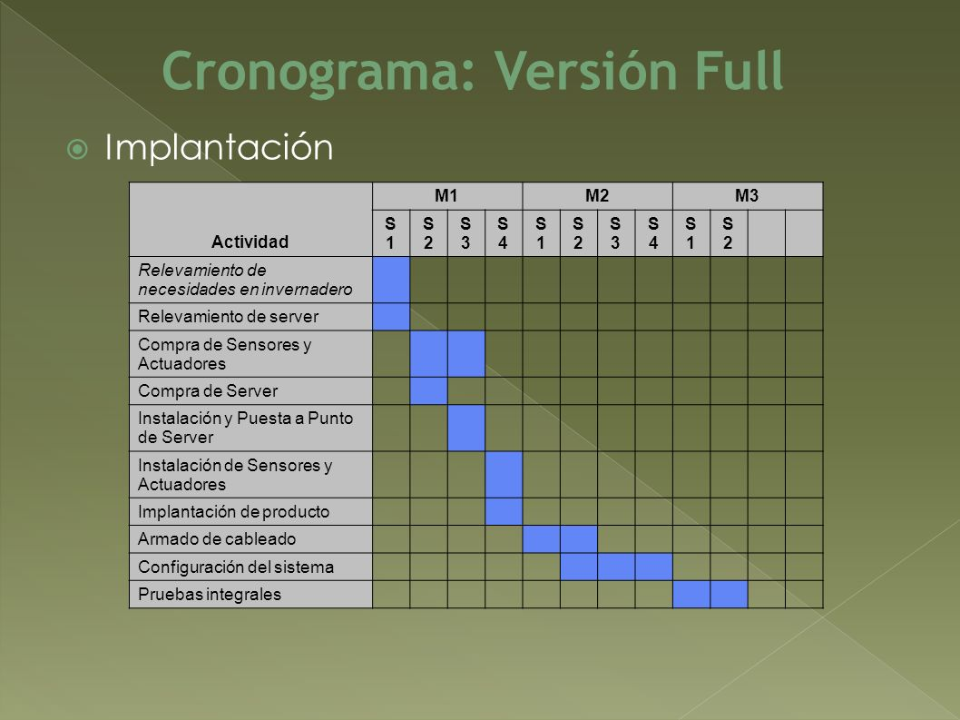 Cronograma: Versión Full