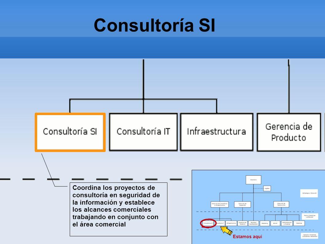 Consultoría SIEstamos aquí. Coordina los proyectos de consultoría en seguridad de la información y establece.