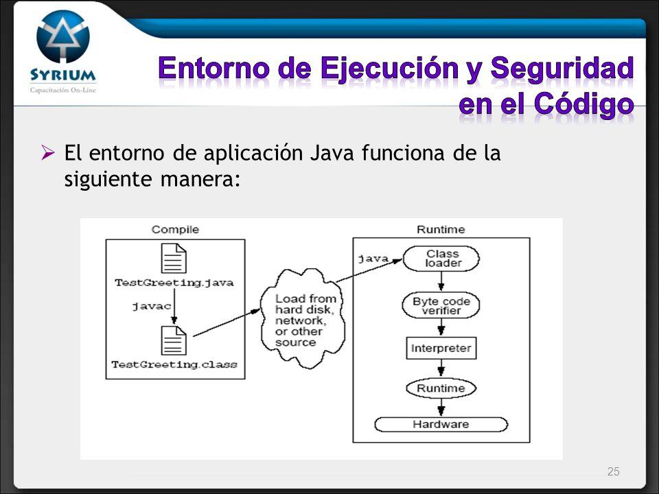 Entorno de Ejecución y Seguridad en el Código