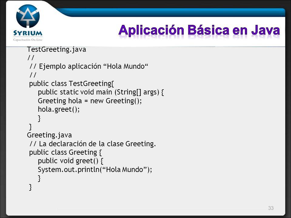 Aplicación Básica en Java