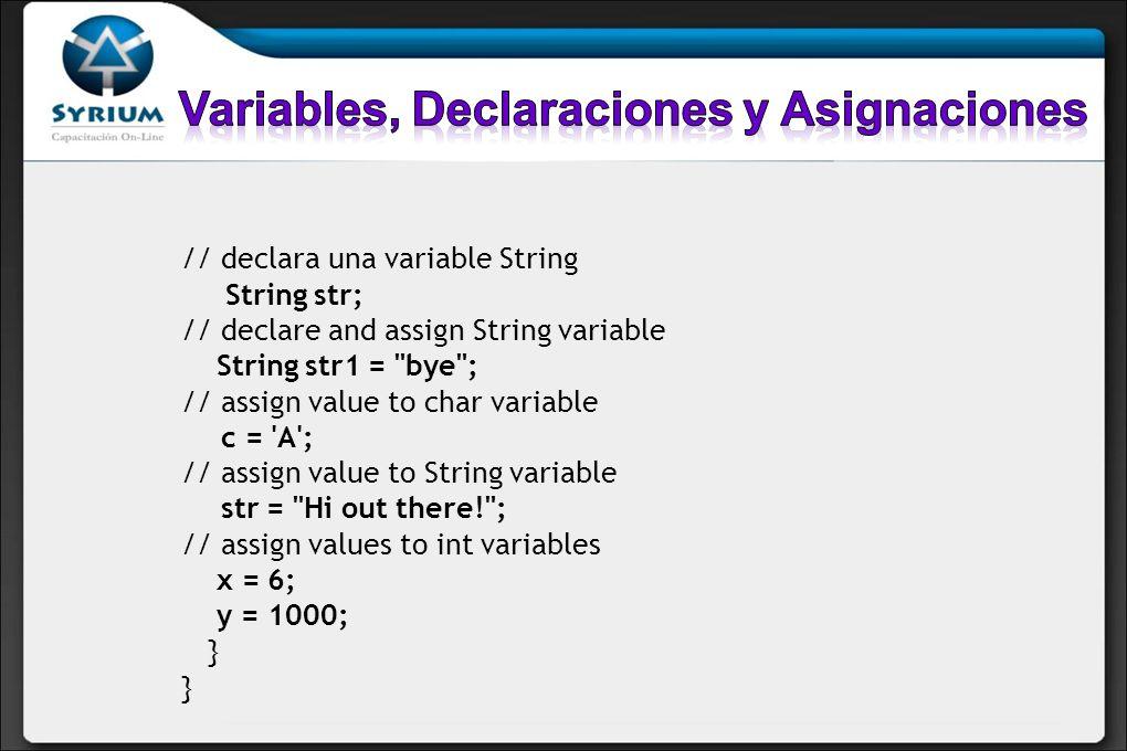 Variables, Declaraciones y Asignaciones