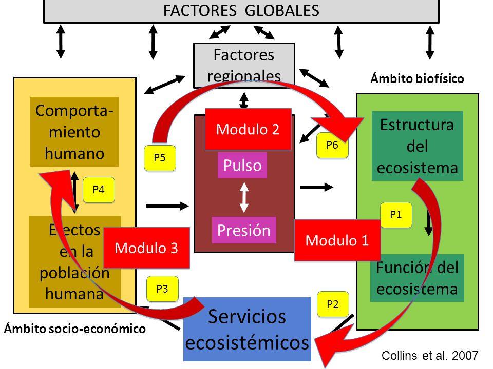 Ámbito socio-económico