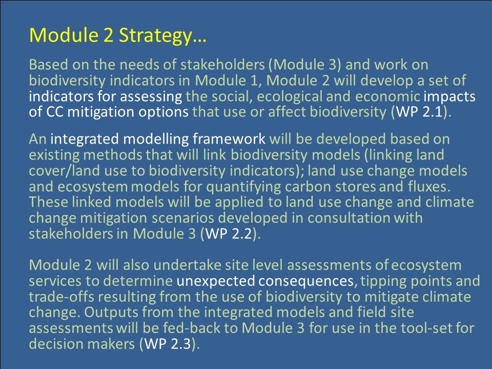 Module 2 Strategy…