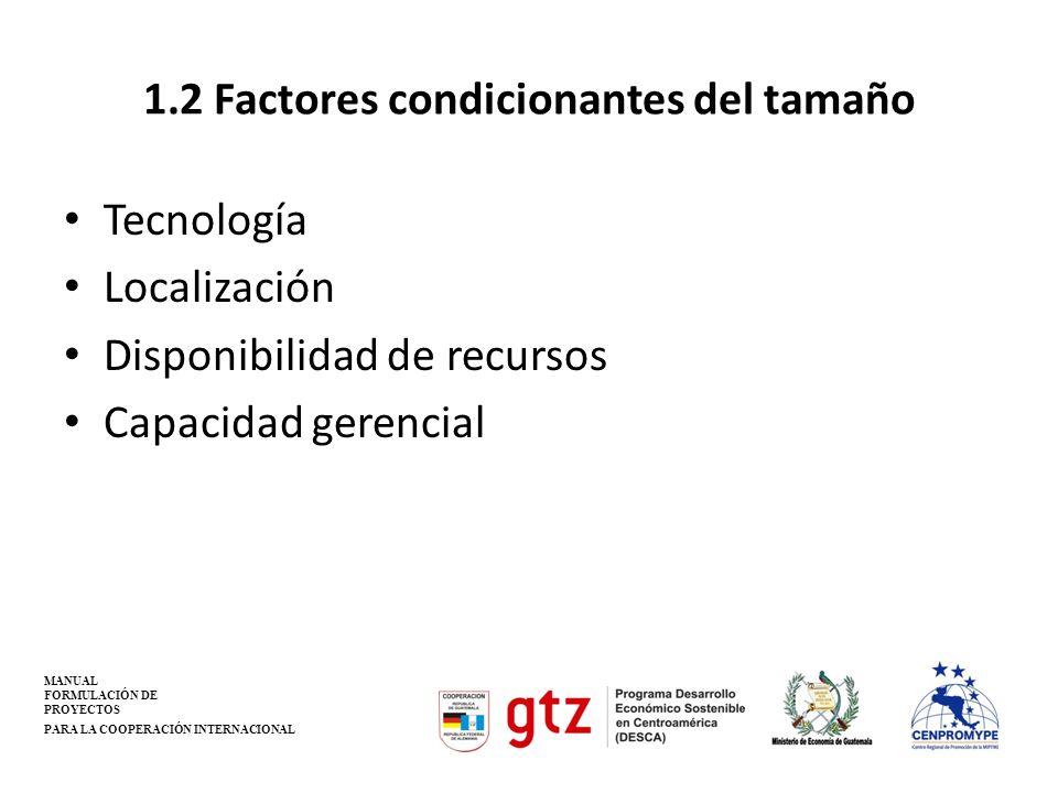 1.2 Factores condicionantes del tamaño