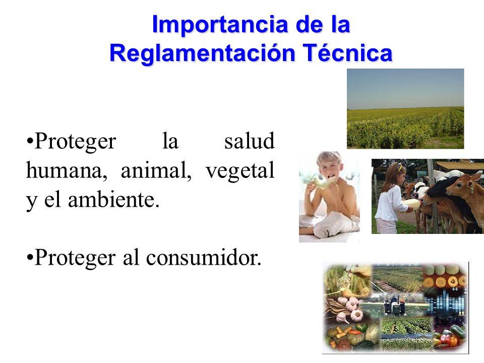 Importancia de la Reglamentación Técnica