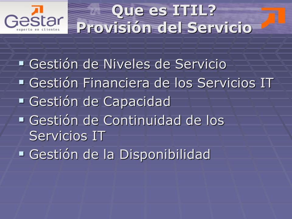Que es ITIL Provisión del Servicio