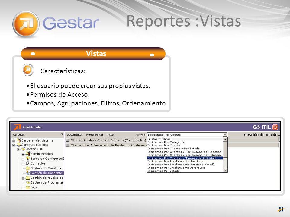 Reportes :Vistas Vistas Características: