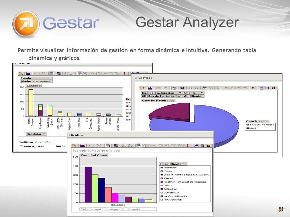 Gestar Analyzer Permite visualizar información de gestión en forma dinámica e intuitiva.