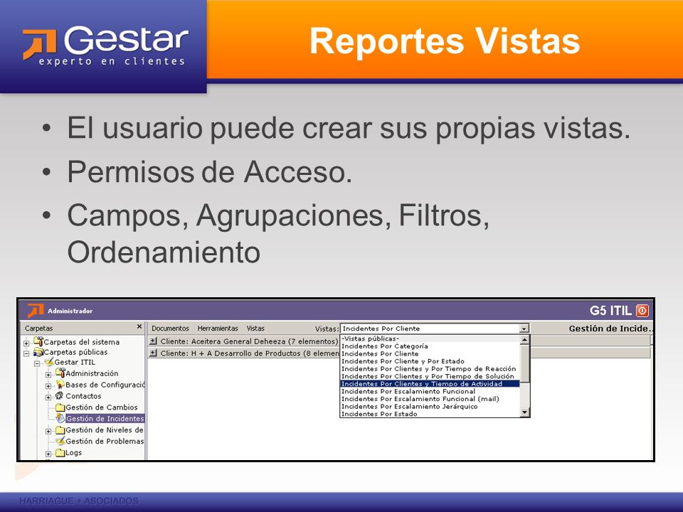 Reportes Vistas El usuario puede crear sus propias vistas.