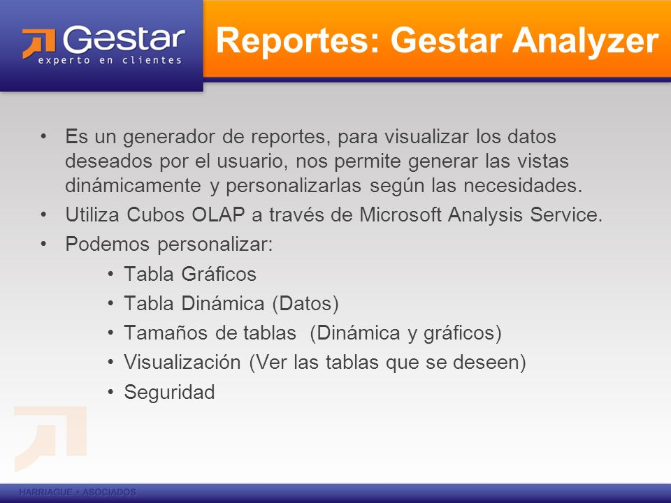 Reportes: Gestar Analyzer