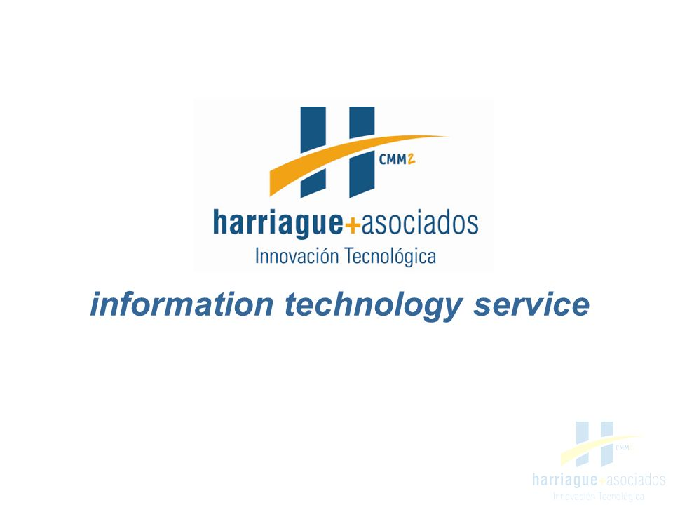 information technology service