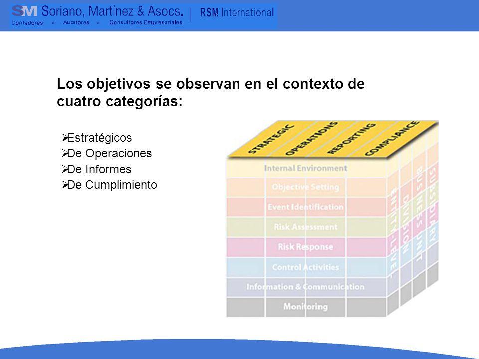 Los objetivos se observan en el contexto de cuatro categorías: