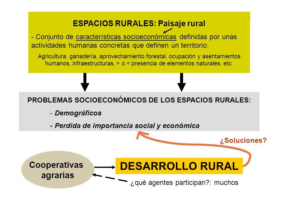 ESPACIOS RURALES: Paisaje rural