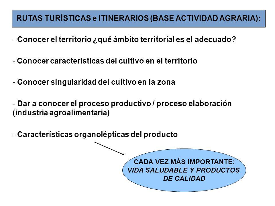 RUTAS TURÍSTICAS e ITINERARIOS (BASE ACTIVIDAD AGRARIA):