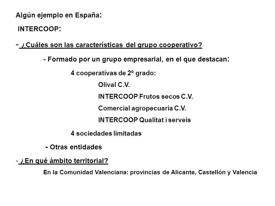 ¿Cuáles son las características del grupo cooperativo
