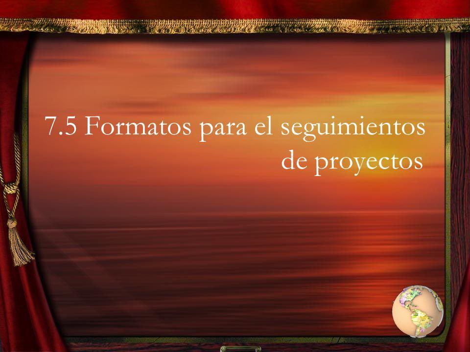 7.5 Formatos para el seguimientos de proyectos