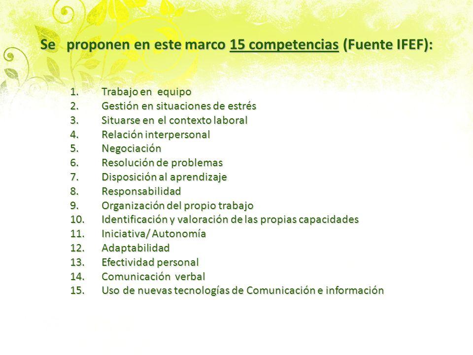 Se proponen en este marco 15 competencias (Fuente IFEF):
