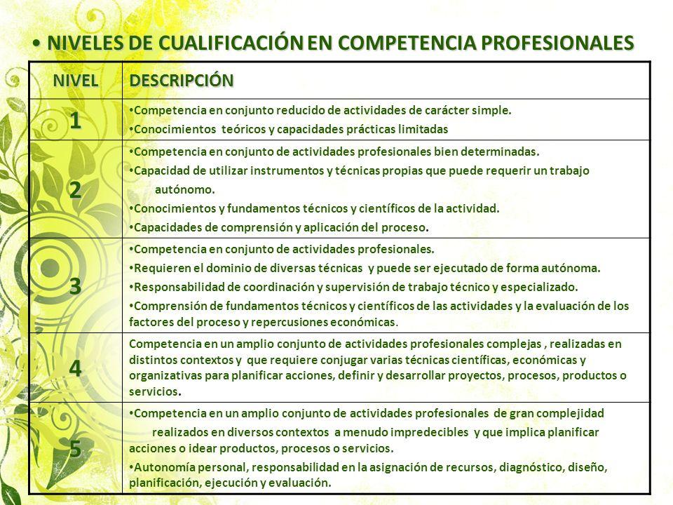 NIVELES DE CUALIFICACIÓN EN COMPETENCIA PROFESIONALES