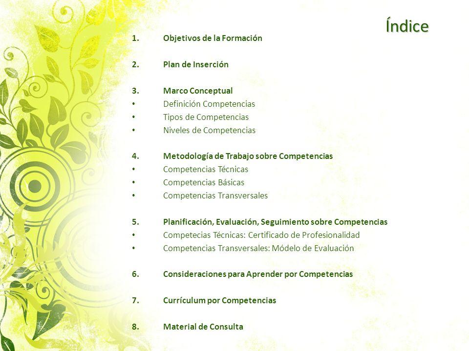Índice Objetivos de la Formación Plan de Inserción 3. Marco Conceptual