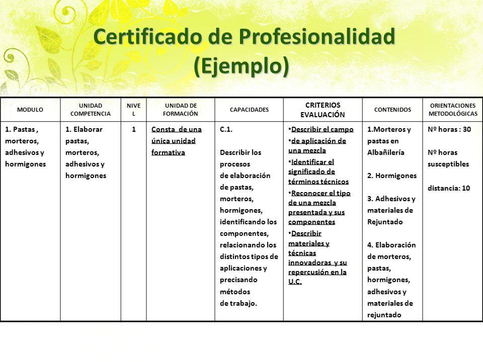 Certificado de Profesionalidad (Ejemplo)