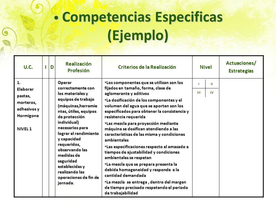 Competencias Especificas (Ejemplo)
