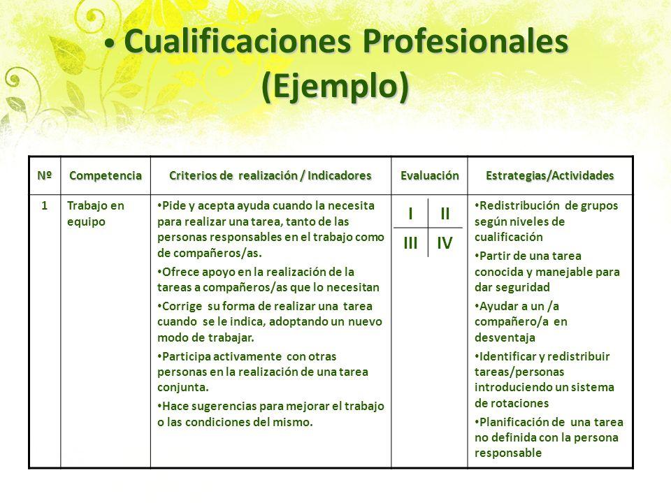 Cualificaciones Profesionales (Ejemplo)