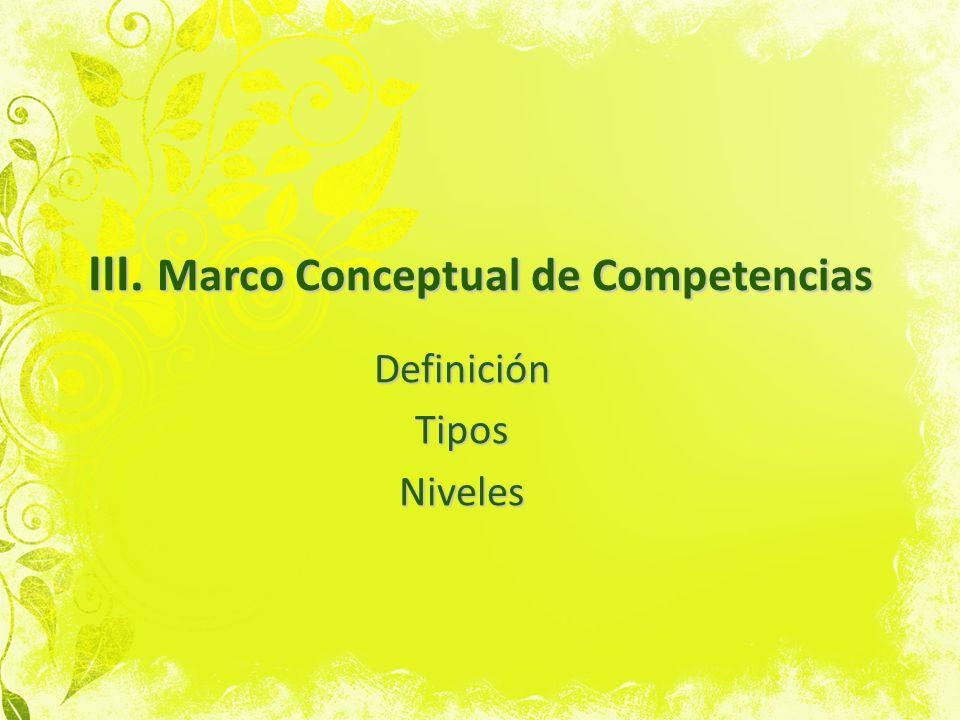 III. Marco Conceptual de Competencias
