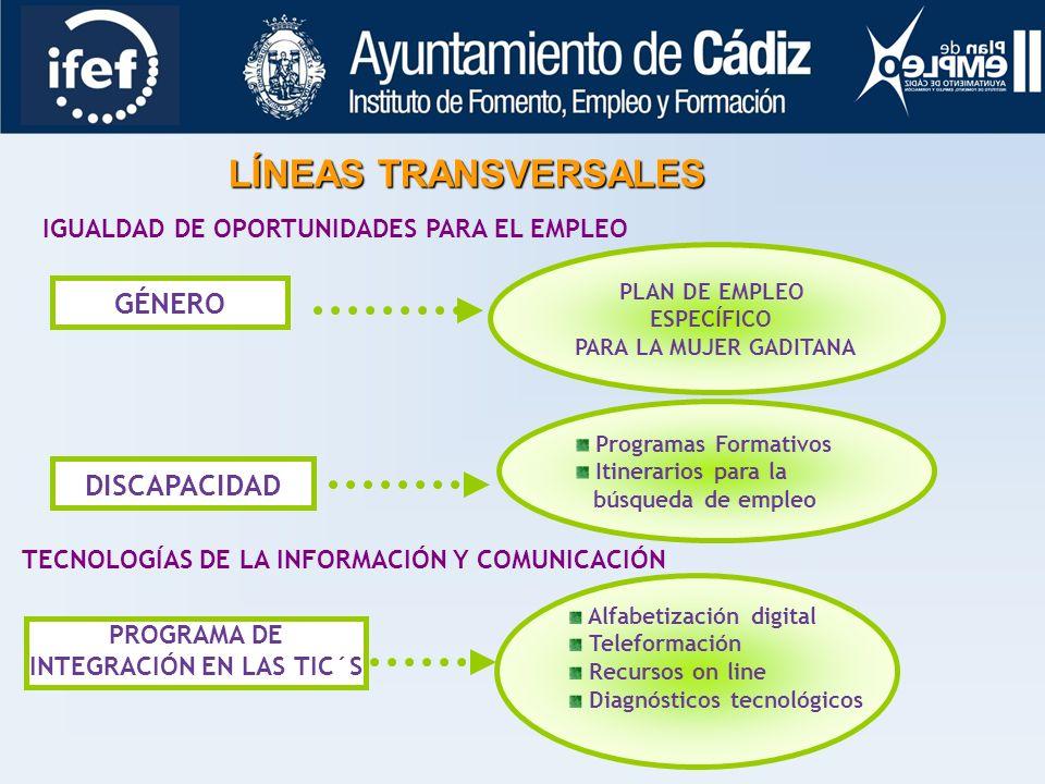 LÍNEAS TRANSVERSALES GÉNERO DISCAPACIDAD