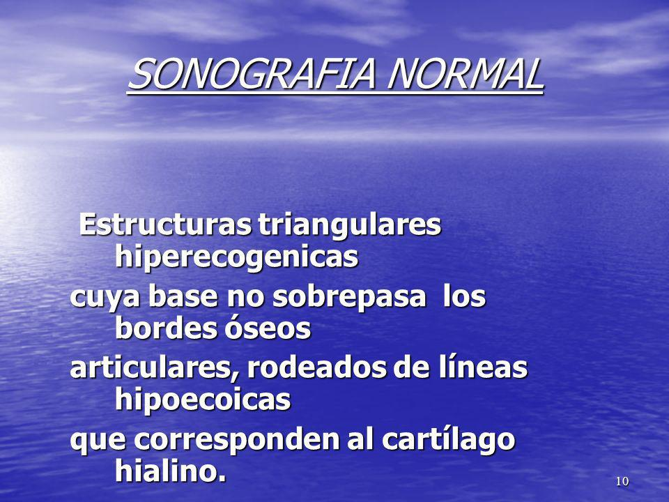 SONOGRAFIA NORMAL Estructuras triangulares hiperecogenicas