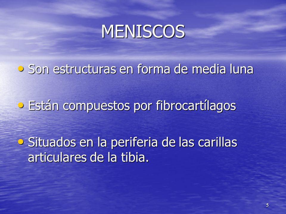 MENISCOS Son estructuras en forma de media luna