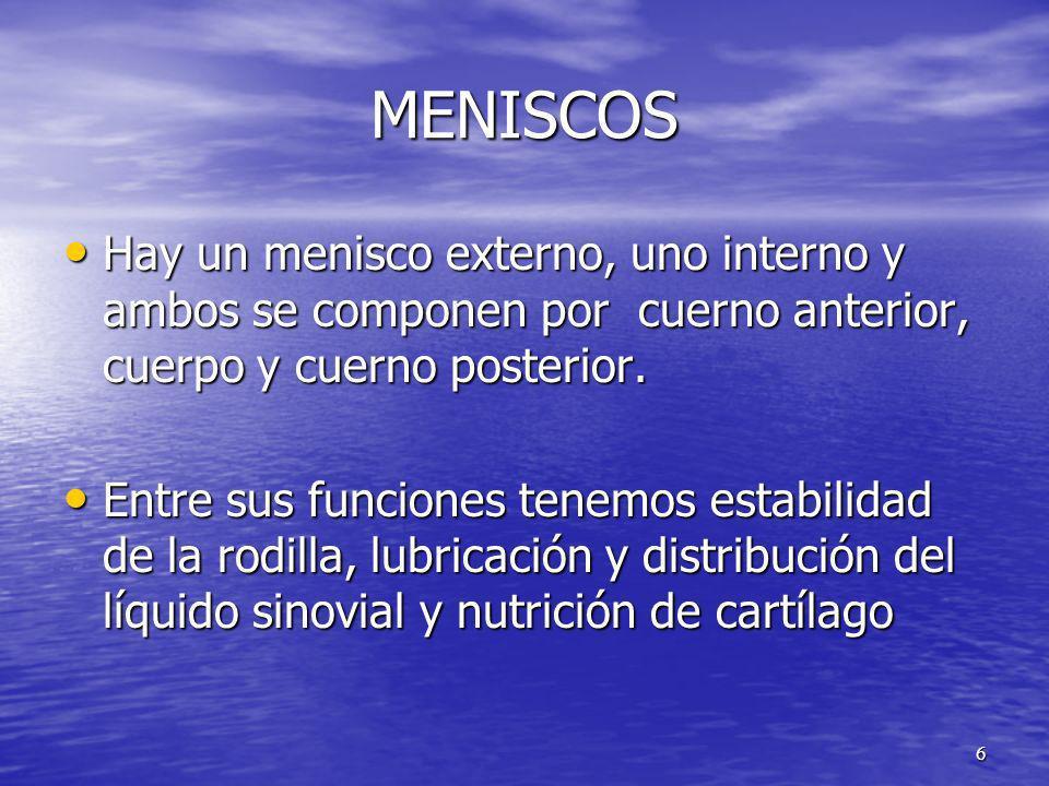 MENISCOS Hay un menisco externo, uno interno y ambos se componen por cuerno anterior, cuerpo y cuerno posterior.