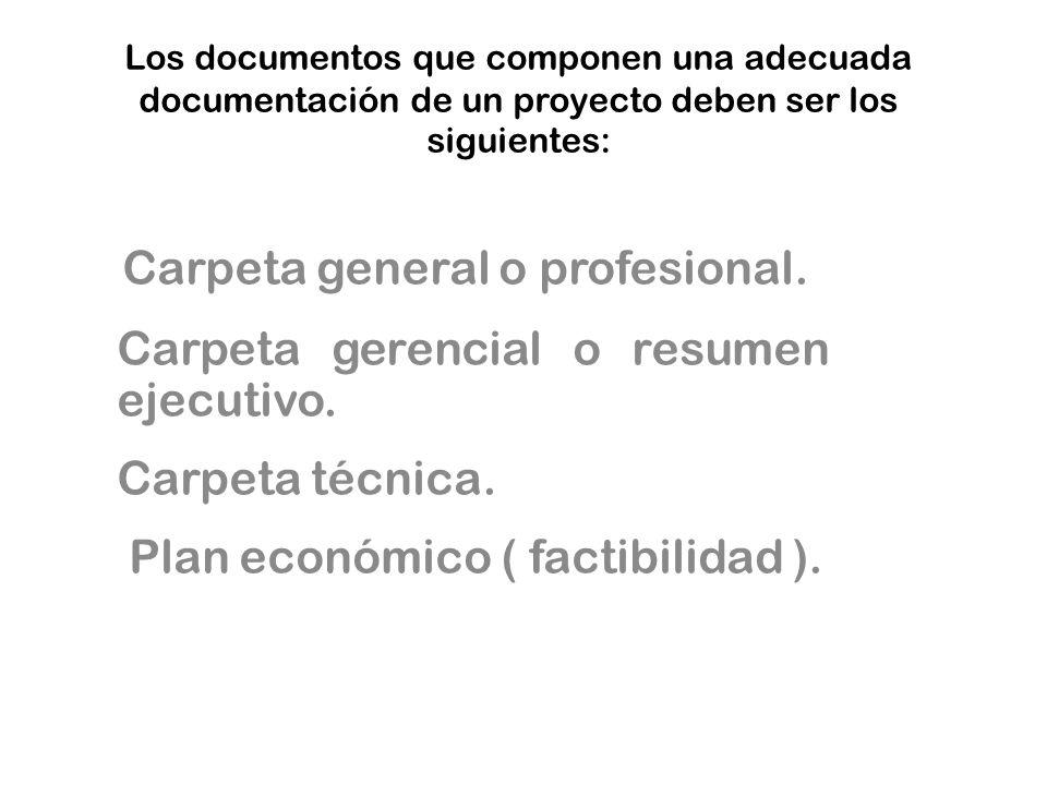 Carpeta gerencial o resumen ejecutivo. Carpeta técnica.