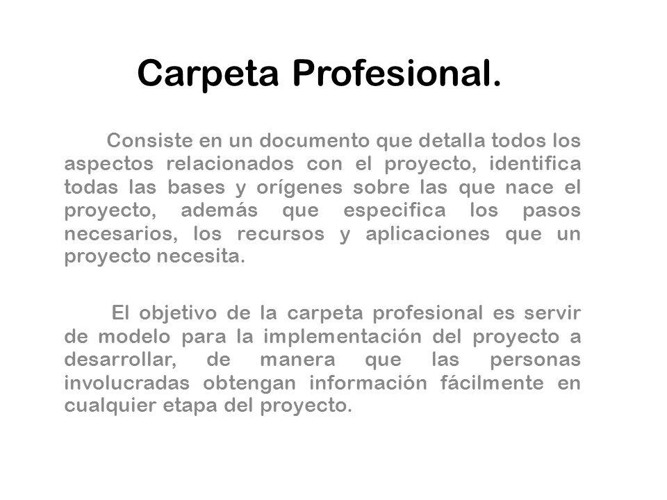 Carpeta Profesional.