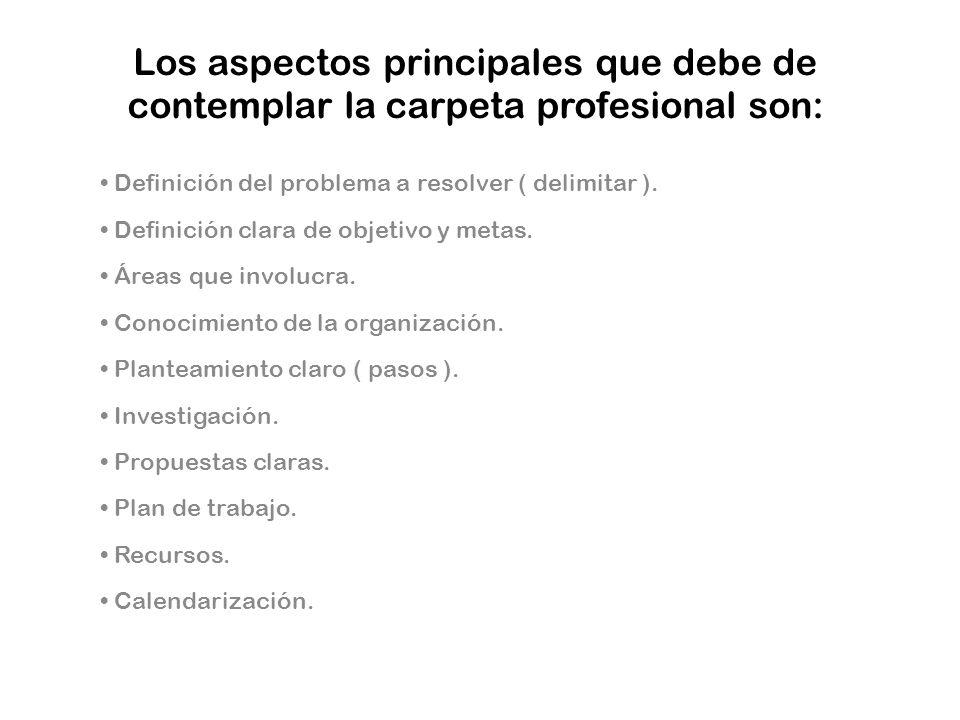 Los aspectos principales que debe de contemplar la carpeta profesional son: