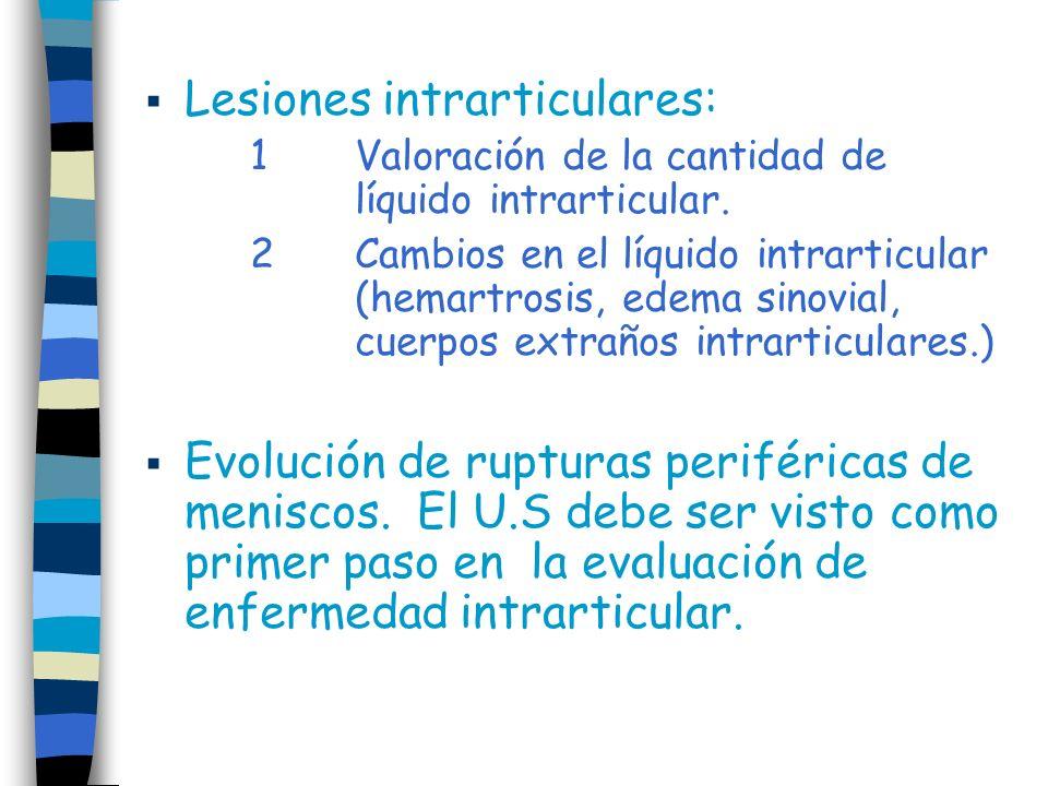 Lesiones intrarticulares: