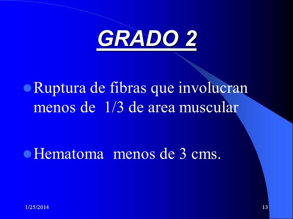 GRADO 2 Ruptura de fibras que involucran menos de 1/3 de area muscular