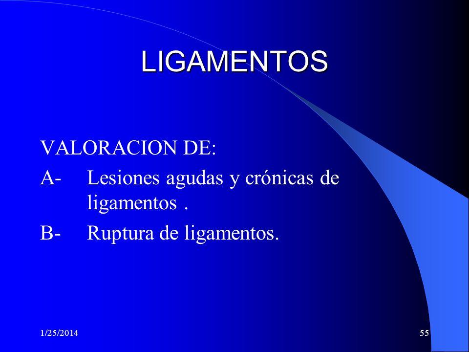 LIGAMENTOS VALORACION DE: