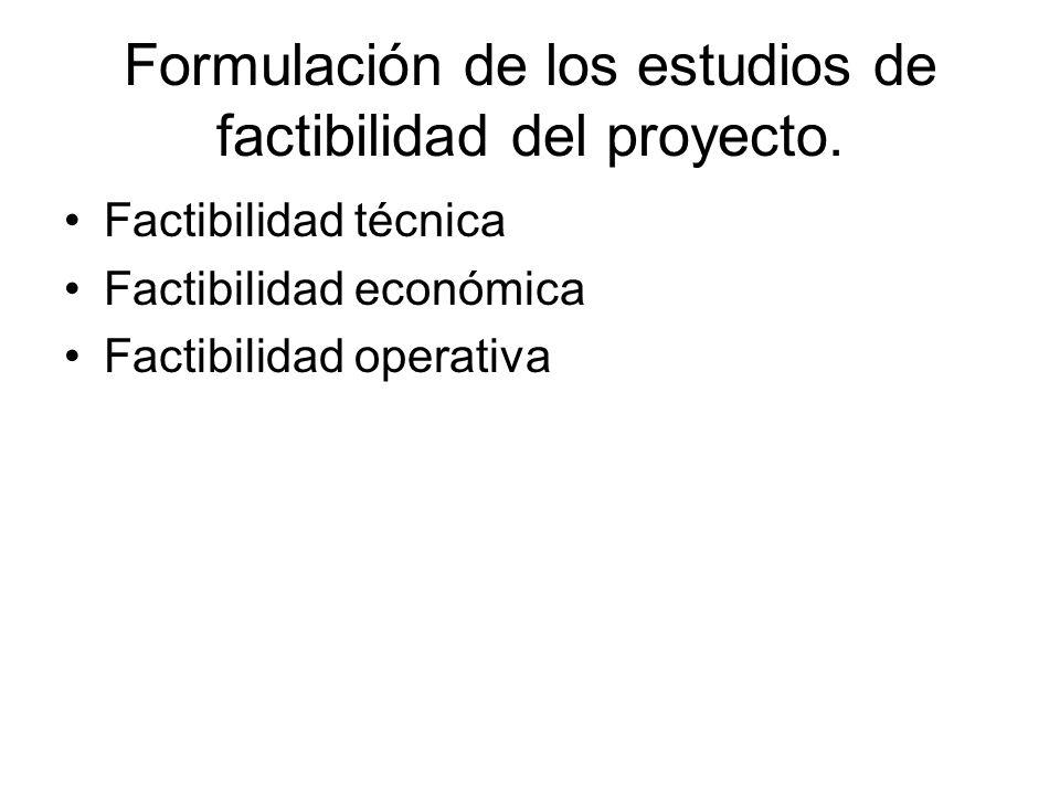 Formulación de los estudios de factibilidad del proyecto.