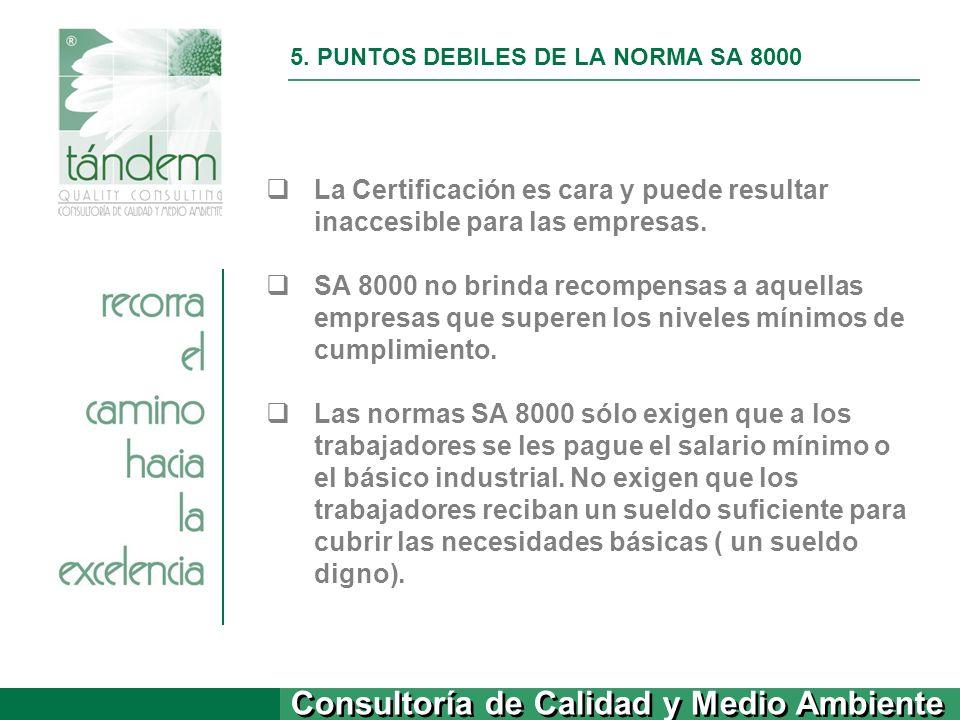 5. PUNTOS DEBILES DE LA NORMA SA 8000